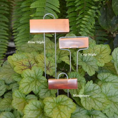 plant Labels