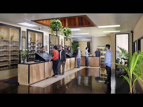 Downtown Los Angeles Cannabis Dispensary